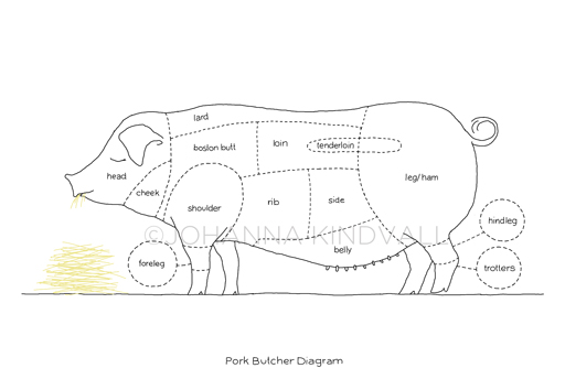 pig butcher drawing